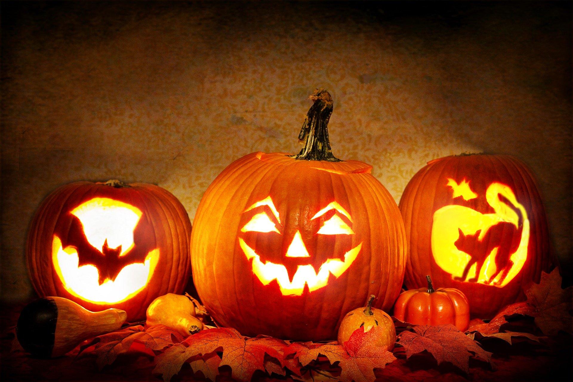 Tout savoir sur Halloween